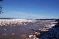 Drift Ice 24 Feb 04_070
