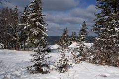 Snow on trees and Robar's cottage 6 Mar 03